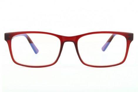 Computer glasses BLF73C